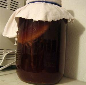 Brewing Kombucha Tea