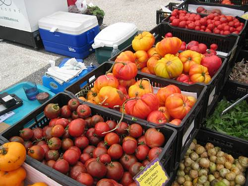 Fresh Produce at a Farmers Market