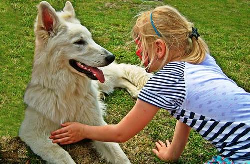 A Little Girl Patting Her Pet Dog