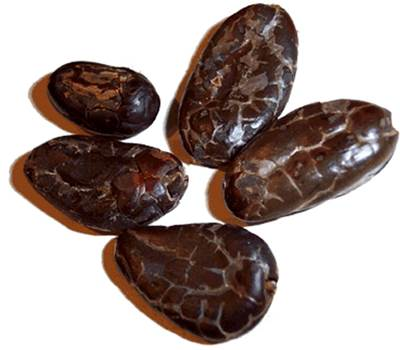 Raw Cacao Nuts