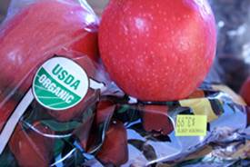 USDA Certified Organic Apples