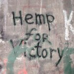 Try Hemp! It'll Rock Your World for Sure
