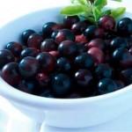 Acai Berry – The Amazing Antioxidant