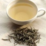 Close-Up on White Tea