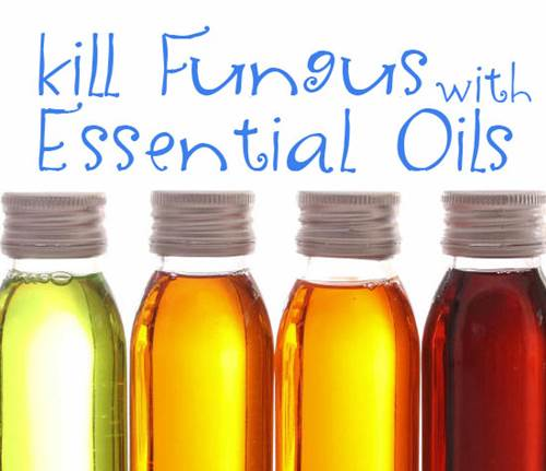 Small Bottles of Essential Oils to Kill Nail Fungus