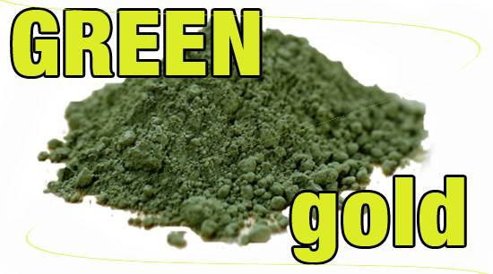 Spirulina Powder - Green Gold