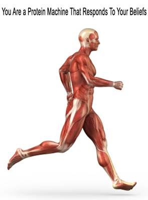 Graphic Showing Muscle Mass of a Running Man