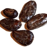 There's Something Magical About Cacao, My Personal Tale